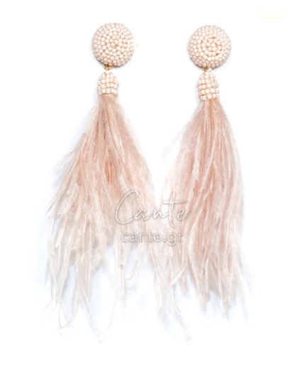Γυναικεία Σκουλαρίκια Με Φτερά Ροζ